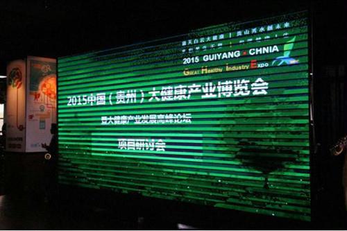 2015中国(贵州)大健康产业发展高峰论坛项目研讨会举行